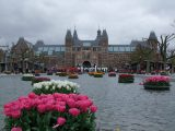 Learn more about the flowers Amsterdam is famous for when on your motorhome holidays in Holland