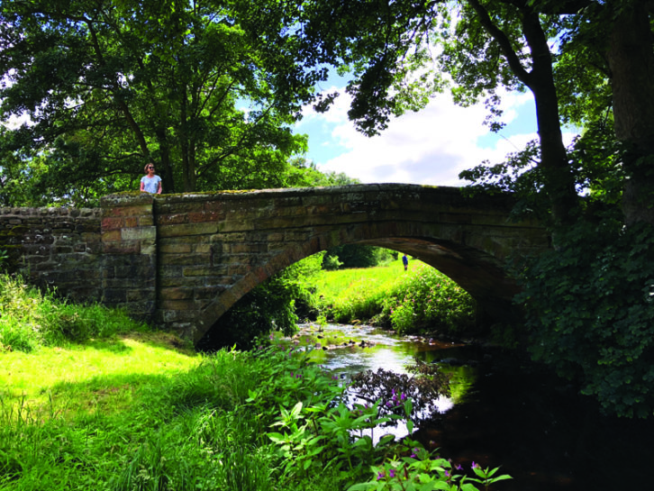 There are plenty of walking trails to enjoy in the locality