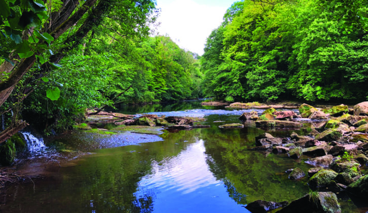 The trail down to Hackfall Gorge is quite steep , but you can picnic by the River Ure